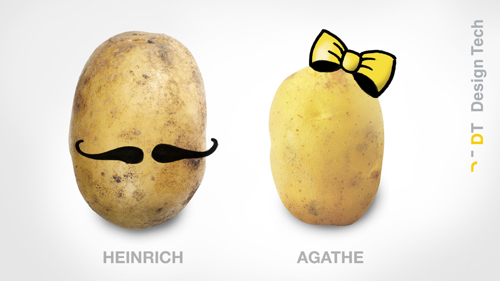 20160907_Kartoffeln